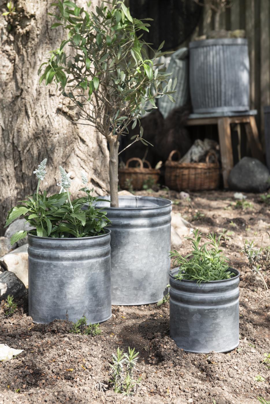 Garten Töpfe und Pflanzgefäße, Bild 1