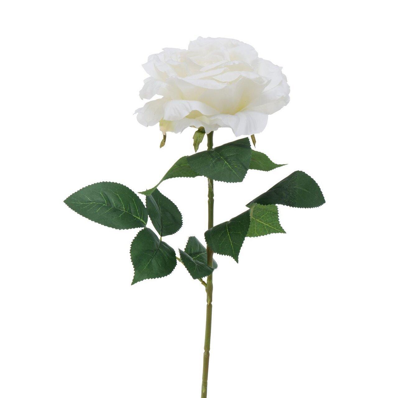 Boltze Stielkunstblume Rose