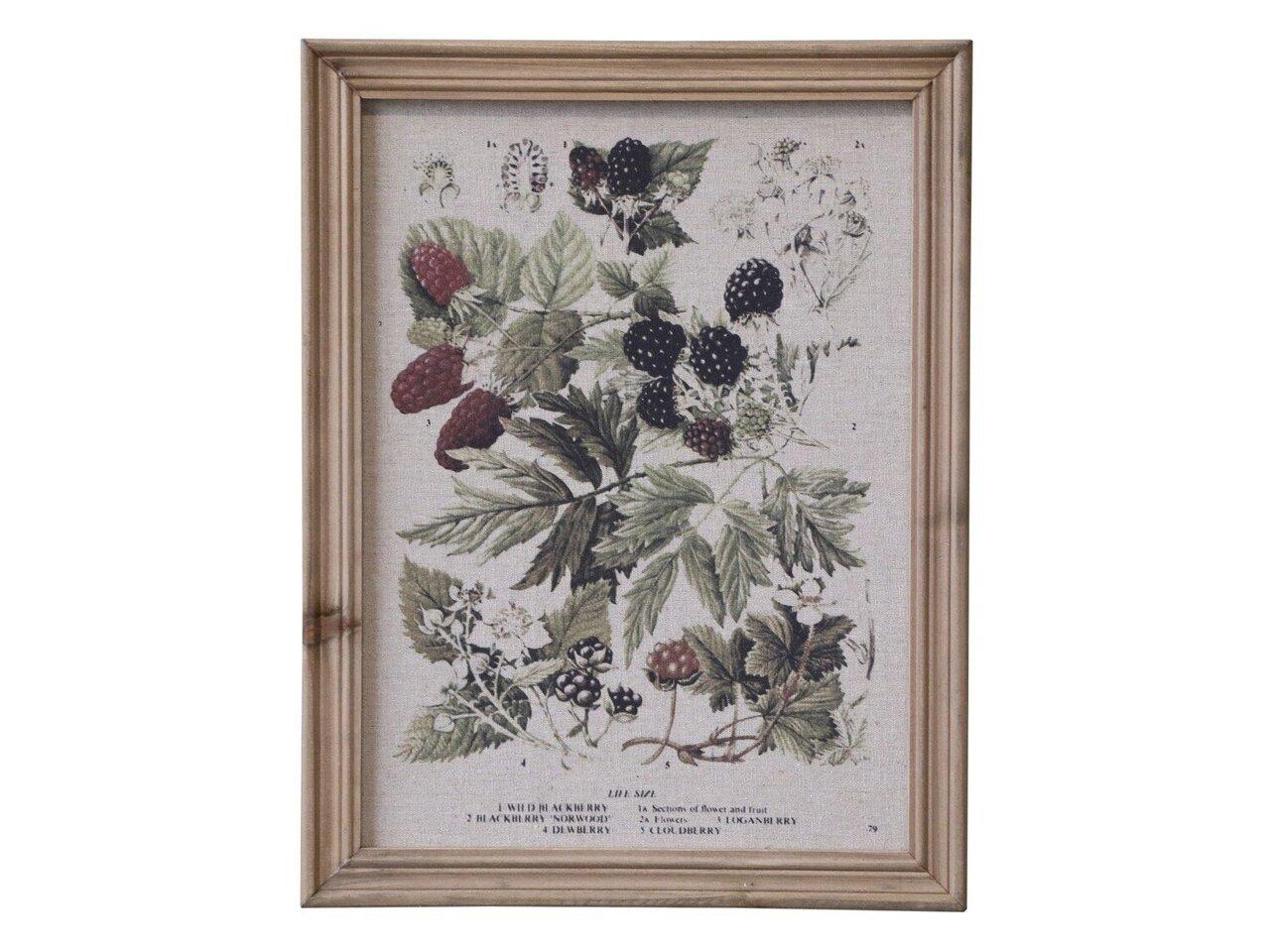 Chic Antique Bild mit Beeren Motiv und Naturrahmen