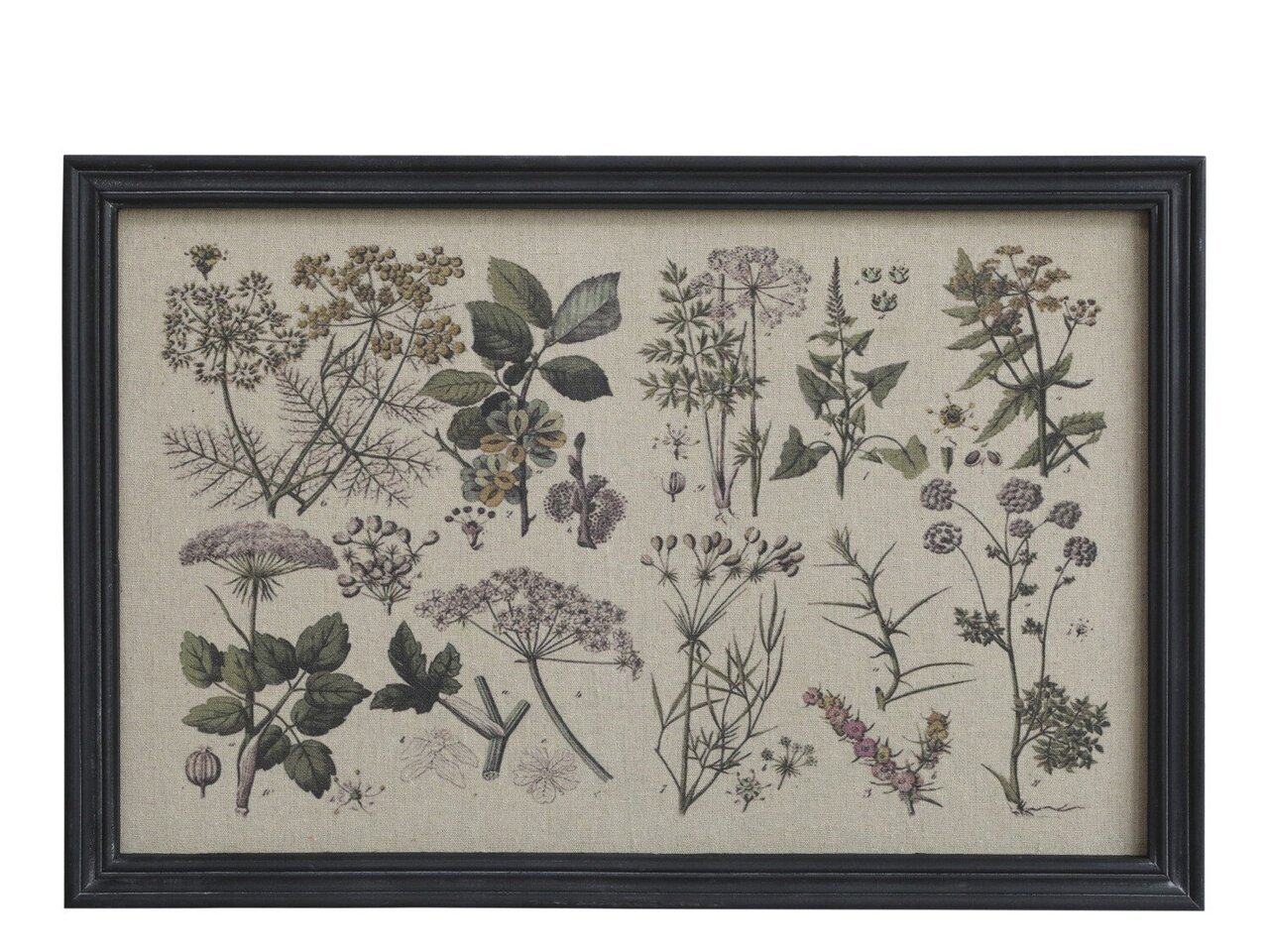 Chic Antique Bild mit Blumendruck und schwarzem Rahmen