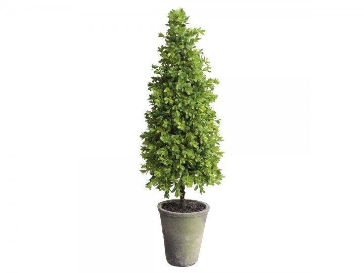 Chic Antique Fleur Buchsbaum im Topf