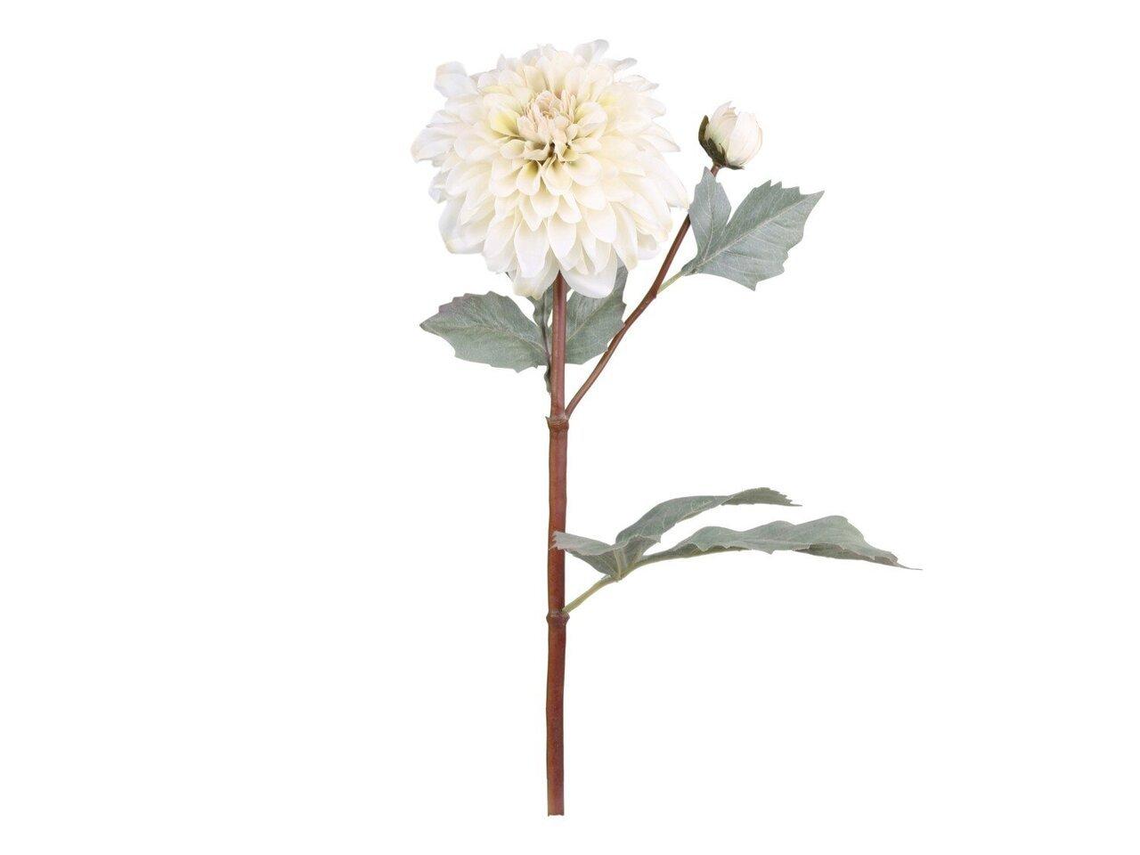 Chic Antique Fleur Dahlien