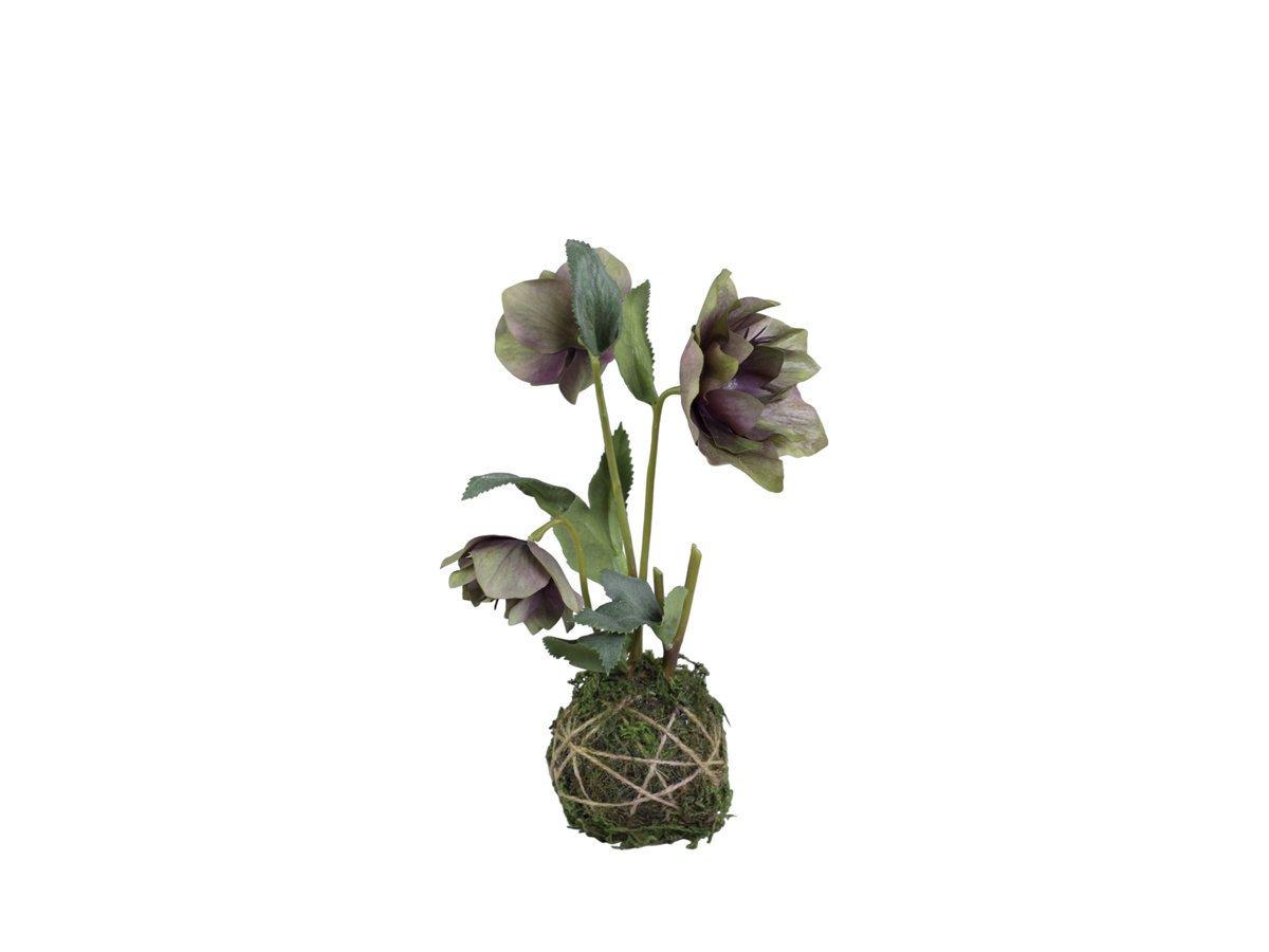 Chic Antique Fleur Helleborus mit Moosball