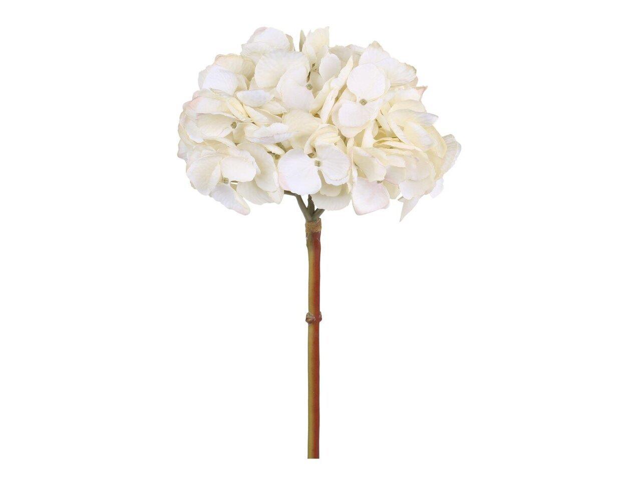 Chic Antique Fleur Hortensie creme