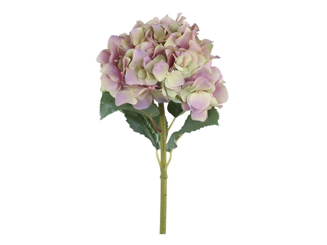 Chic Antique Fleur Hortensie mit Blättern