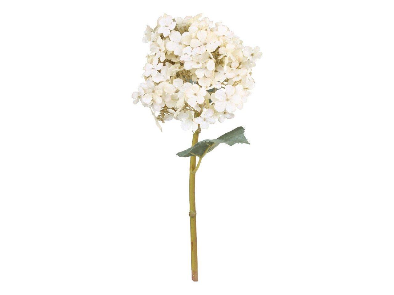 Chic Antique Fleur Hortensien