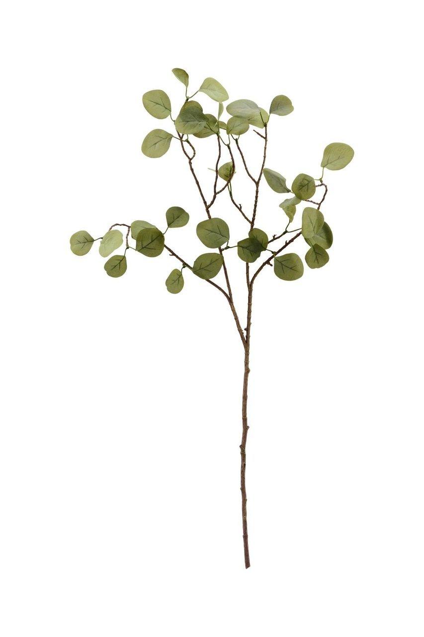 House Doctor Kunstzweig Eucalyptus