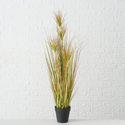 Boltze Topfpflanze Kunstpflanze Zwiebelgras