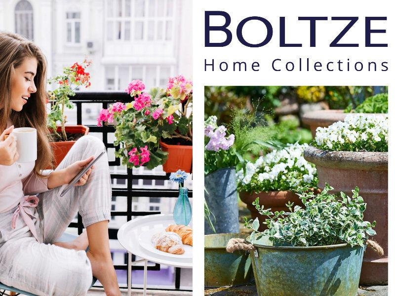BOLTZE Home Collections Online Shop