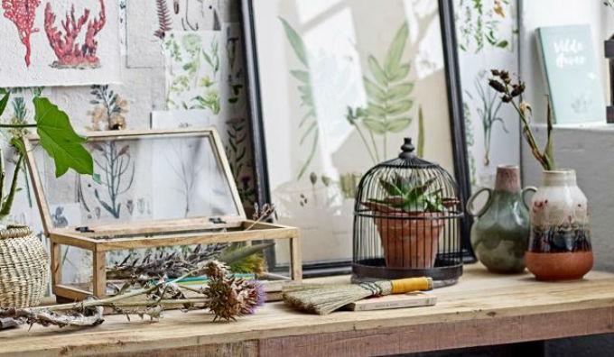 Creative Collection: Botanist